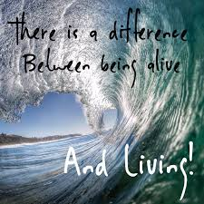 live boldy